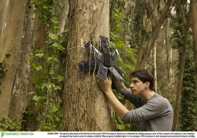 rainforestprotect