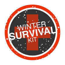 Safety Apps Review - Winter Survival Kit App Icon